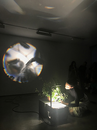 Performance by Gaia Fugazza, shown at the Lisson Gallery, London. Mouth sculptures, rituals, birth control, plant intelligence, plant sentience, transcendental practices